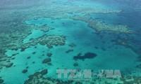 China zerstört Korallenriffe im Ostmeer für den Bau künstlicher Inseln