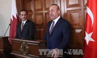 Spannungen am Golf: Katar und die Türkei bemühen sich um eine Lösung