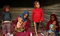 UNO warnen vor humanitärer Katastrophe in Syrien