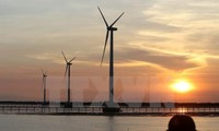 Entwicklung der Windenergie in Bac Lieu und Potenzial der Windenergie in Vietnam