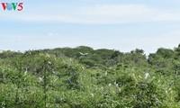 Besuch im Storchen-Garten Bang Lang in Can Tho