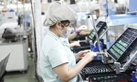 Die Menge von ausländischen Direktinvestitionen in Vietnam erreicht neue Rekordhöhe