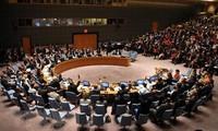 Teilnahme am Weltsicherheitsrat verbessert die Position Vietnams