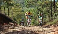 Mountainbike-Meisterschaft 2019