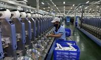 Fitch Ratings: Die vietnamesische Wirtschaft ist der Lichtblick in der Region
