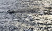 Aktuelle Informationen über die verschollenen vietnamesischen Besatzungsmitglieder nahe der Insel Jeju