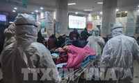 Anzahl der Infektionen und Todesopfer wegen Coronavirus im chinesischen Hubei steigt drastisch
