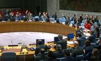 UN-Sicherheitsrat informiert sich über die Tätigkeiten der OSZE