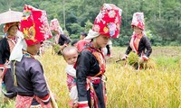 Die Geschlechterfrage im Zielprogramm zur Entwicklung der Gebiete ethnischer Minderheiten einführen