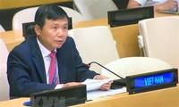 Vietnam ruft zur Förderung der Beteiligung von Frauen am Friedensprozess in Afghanistan auf