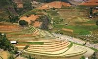 Das Fest zur Entdeckung der Terrassenfelder in Mu Cang Chai