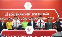 V-League 2021 wird Mitte Januar 2021 eröffnet