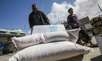 Arabische Liga begrüßt die Wiederaufnahme der Hilfe für Palästina durch die USA