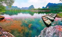 Das internationale Fotografie-Festival Vietnam wird in Ninh Binh stattfinden