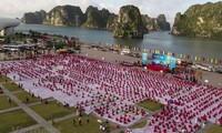 7. internationaler Yogatag virtuell veranstaltet