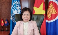 Vietnam unterstützt die Förderung der nachhaltigen Erholung durch UNCTAD