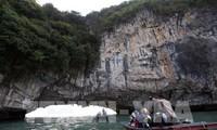 베트남, 관광 분야에서 급성장하고 있는 새로운 별