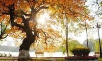 "Tuan Jeon의 음악편지, ""가을의 시작"""