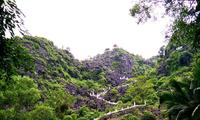 셀카의 성지, 닌빈의 '무어 동굴'