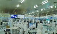 베트남 삼성, 올해 수출 60억 달러 감소 가능