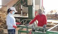 코로나19 피해 기업 지원 강화