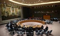 베트남, 유엔안전보장이사회 비상임이사국 10개국과 유엔 사무총장간 최초 온라인 회의 주재