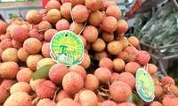 하노이서 농산물 홍보 시장 열린다
