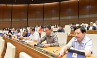 국회, 하노이 특수 기제 토론