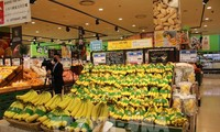 베트남의 바나나, 한국  롯데 마트에 본격 판매
