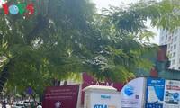 VOV, VTC, 베트남 국조의 날 사업 위원회, 의료용 마스크 기증 캠페인 진행