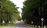 떠이응우옌(Tây Nguyên) 산림 망덴(Măng Đen) 고원의 아름다움