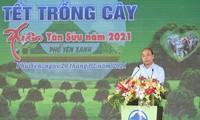 푸른 베트남
