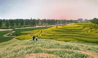 Publican dos nuevos destinos turísticos en Hanói