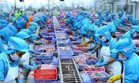 2021년 상반기 4개월, 베트남 수산물 수출액 23억 9천만 달러 달성