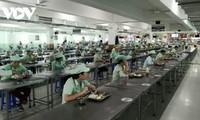 다낭 (Đà Nẵng) 시 기업, 생산 보장 및 코로나19 방역에 적극적으로 나서