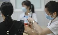 나노코박스 백신 서류, 의약품 유통 등록증 발급 자문위원회로 이관