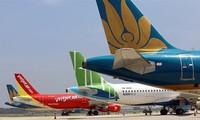 베트남 항공국, 하노이에 국내선 운항 재개 제안
