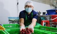 센도, 베트남 사회적 기업 지원 프로그램 마련