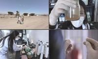금속 먹는 미생물, 폐기물 정화에 시범 사용