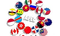 វៀតណាមបង្កើនតួនាទីនិងឋានៈរបស់ខ្លួននៅក្នុងប្លុក APEC
