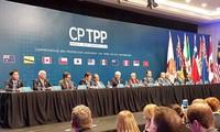 ប្រទេសសមាជិក CPTPP ពិចារណាលើការរៀបចំកិច្ចប្រជុំថ្នាក់រដ្ឋមន្ត្រីតាមអ៊ិនធឺណែត