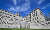 WTO កំណែទម្រង់ដើម្បីឆ្លើយតបនឹងស្ថានភាពថ្មី