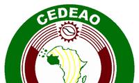 ECOWAS សម្រេចជ្រៀត ជ្រែកដោយយោធាចូលម៉ាលីខាងជើង