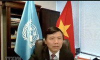 Vietnam Bagi Pengalaman Pengembangan Sosial Via Teknologi Digital di PBB