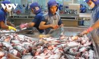 Ekspor Hasil Laut Vietnam Meningkat 26% pada bulan Mei 2021