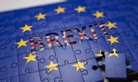 英国脱欧谈判进程面临的挑战