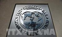 国际货币基金组织警告:世界经济仍未完全复苏