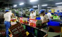 富寿省发挥优势 大力发展工业生产