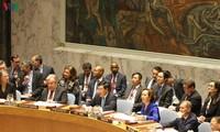 越南优先促进遵守联合国《宪章》