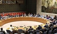 越南重申大力支持《不扩散核武器条约》的宗旨和目标